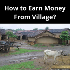 How to Earn Money From Village?